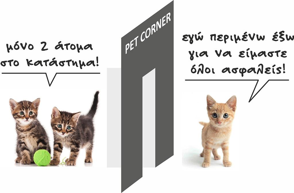 Αυτοκόλλητο για τον Covid 19 όπου μικρά γατάκια εξηγούν πόσα επιτρεπόμενα άτομα έχει το κατάστημα